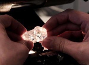 Adelaide diamond company information